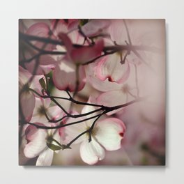 Under the Dogwood Tree Metal Print