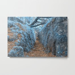 Ancient Sapphire Forest Trail Metal Print