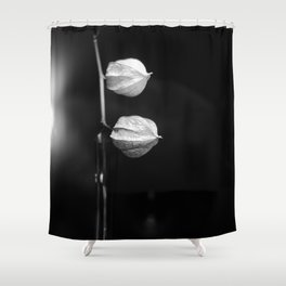 drying flowers Shower Curtain