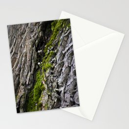 Tree trunk and mushrooms Stationery Cards