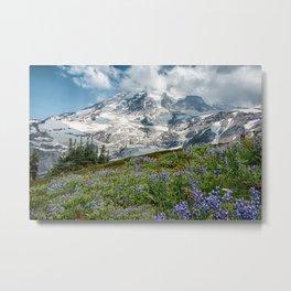 Scenic Landscape Art, Mt. Rainier, Mt. Rainier National Park, Paradise Metal Print