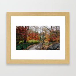 Tree Colored Path Framed Art Print