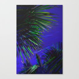 Ever and Ever Canvas Print