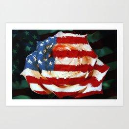 American Rose Art Print