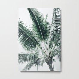 Maui Paradise Palm Hawaii Metal Print