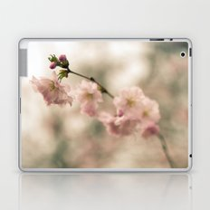 Cherry Blossoms Bloom in Spring Laptop & iPad Skin