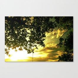 Soaring Sunset Canvas Print