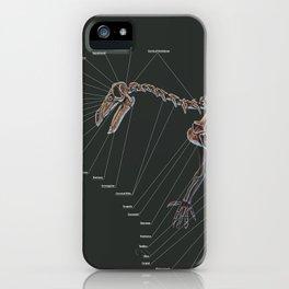 Iguanodon Berissartensis Skeleton Study iPhone Case