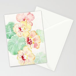 Summer Blush Stationery Cards