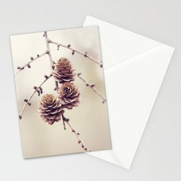 Woodland Pinecones Stationery Cards
