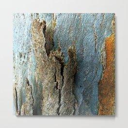 Eucalyptus Tree Bark and Wood Texture 17 Metal Print