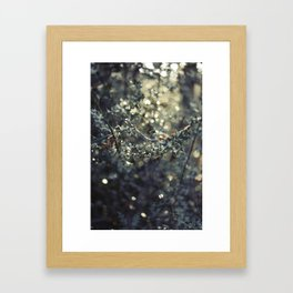 Holly leaves 2 Framed Art Print