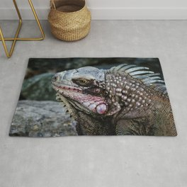 Portrait of an Iguana Rug