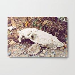 Bones and Stones Metal Print