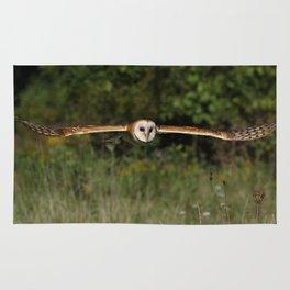 Barn owl in flight Rug