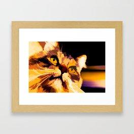 Cat Stare Orange Framed Art Print