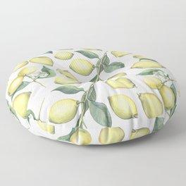 Lemon Fresh Floor Pillow