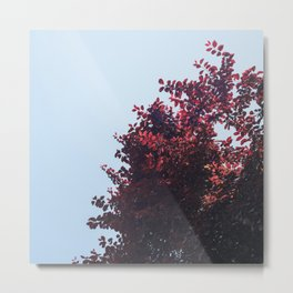 Dear red tree Metal Print