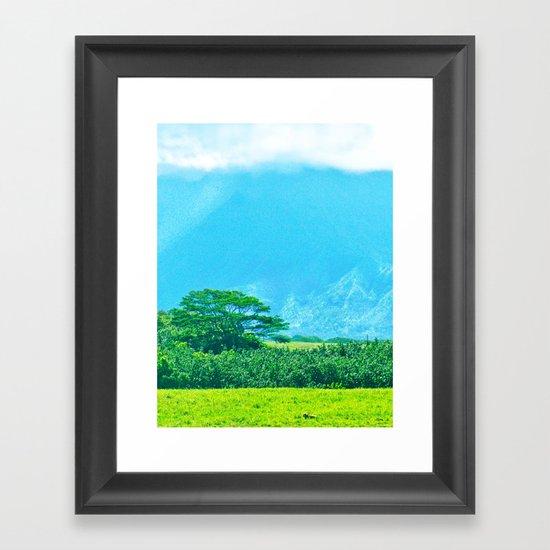 Kauai  Pasture Framed Art Print