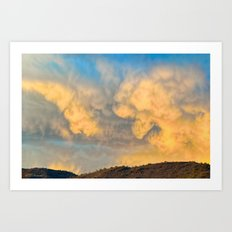Sonoran Gold Art Print