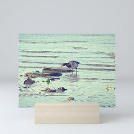 Trash Bird, #3 Mini Art Print