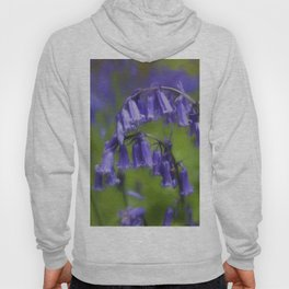 Bluebell Arch Hoody