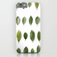 LEAVES COLLECTION iPhone 6s Slim Case