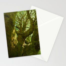 A Saturation of Life Stationery Cards