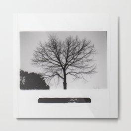Black & White Tree Metal Print