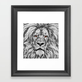 Black Lion Framed Art Print