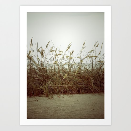 Beach Wheat Grass Art Print