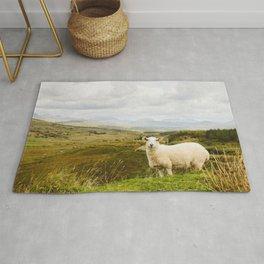 A sheep in the Irish hills Rug
