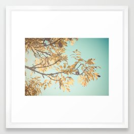 Golden Touch Framed Art Print