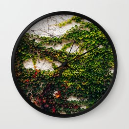 Vines on Webster Wall Clock