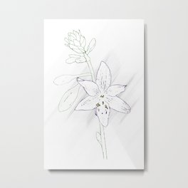 Minimal Nature - Hosta Metal Print