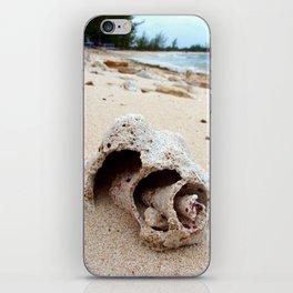 Conch on Bahama Beach iPhone Skin