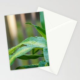 Just Hydrated Stationery Cards