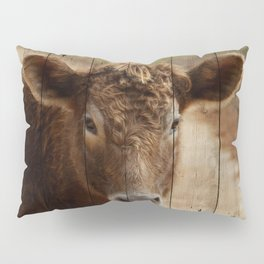 ON THE FARM Pillow Sham