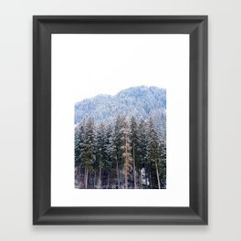 Austrian Winter Framed Art Print