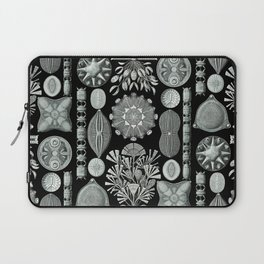 Ernst Haeckel - Scientific Illustration - Diatomea Laptop Sleeve