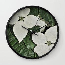 Cornus kousa Wall Clock