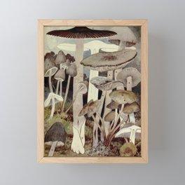 Vintage Mushroom Diagram Framed Mini Art Print