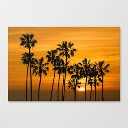 Palm Trees at Sunset by Cabrillo Beach Los Angeles California Canvas Print