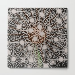 Abstract Dandilion Seeds Metal Print