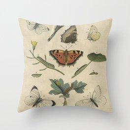 Butterflies & Caterpillars Throw Pillow