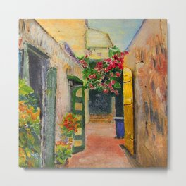 St. Croix Alley Metal Print