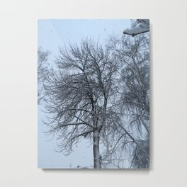 The snow. Metal Print