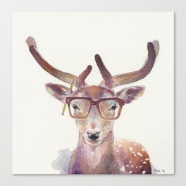 Study Deer Canvas Print