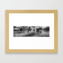 Butterfly Bay  Framed Art Print