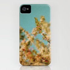 Darling Buds of May iPhone (4, 4s) Slim Case